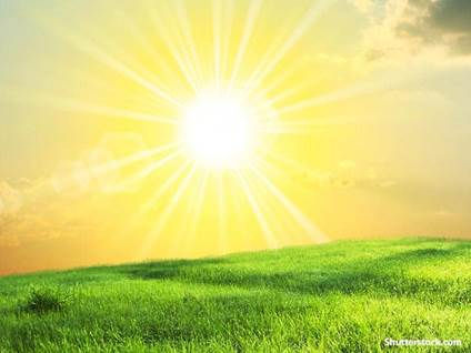 nature sunshine field