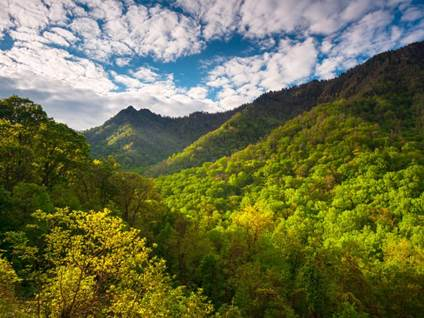 Smokey Mountains, TN