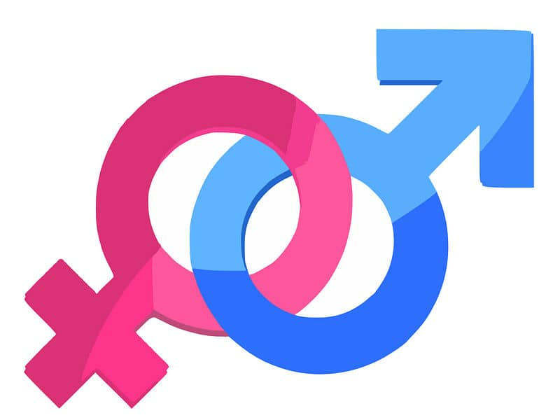 What Does The Bible Say About Gods Gender Is God Male Or Female