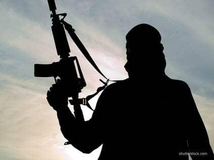 ISIS Fighter Gun