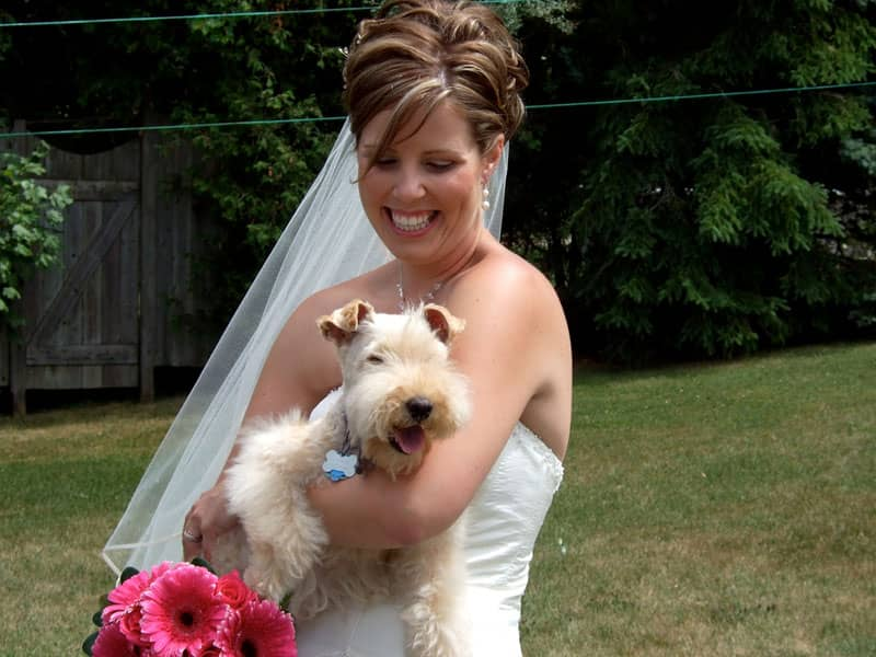 bride with dog