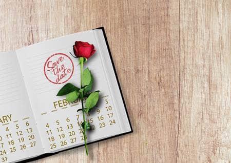calendar and rose