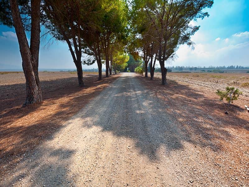 road, path