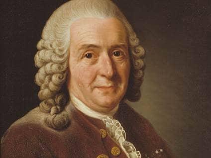 Carl Linneaus