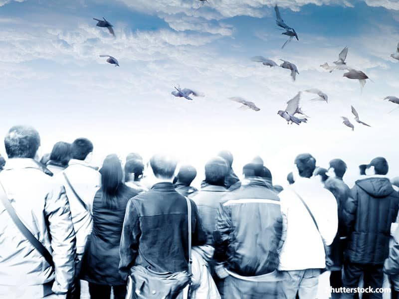 people looking at sky