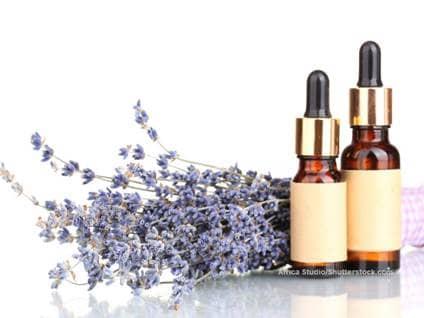 Africa Studio Lavender oil