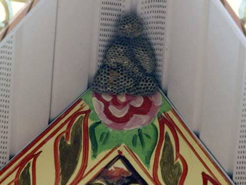 Buddha Beehive - Look! It's Jesus! by Harry and Sandra Choron