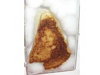 Virgin Mary Grilled Cheese