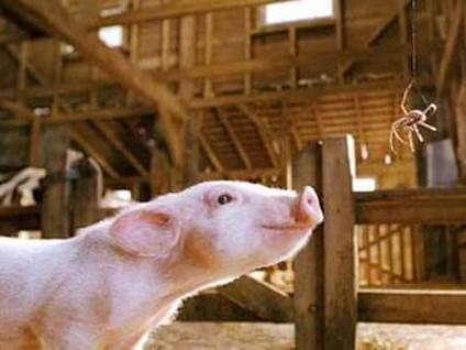 Julia Roberts as Charlotte in Charlotte's Web
