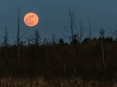 That Amazing Supermoon And Cyberspace From Canada Beliefnet