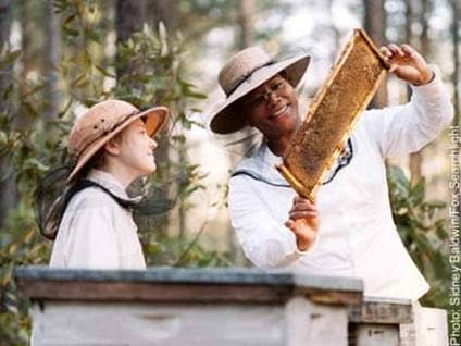 Queen Latifah in The Secret Life of Bees