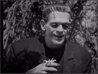 Frankenstein movie 1931