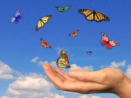 Hand releasing butterflies