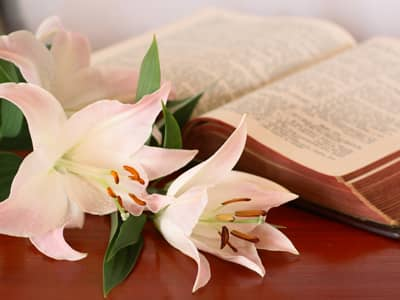Bible Verses for Holy Week
