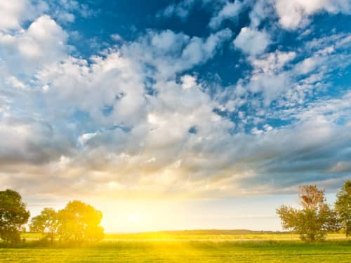 Summer morning sun rising in a blue sky