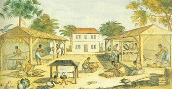Colonial Slavery on Tobacco Farm