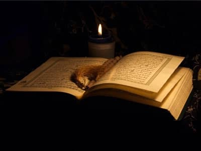 Book with Candlelight