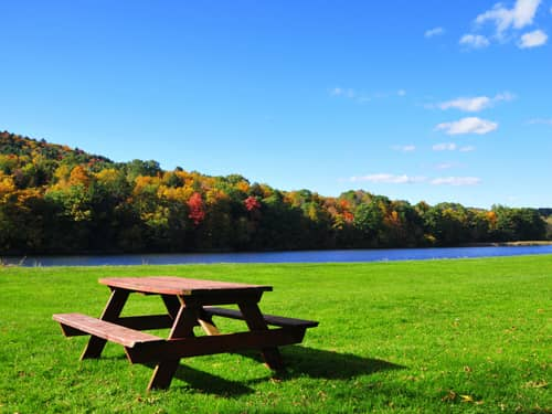 Park with picnic table