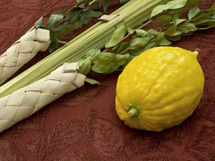 Etrog and Lulav of Sukkot