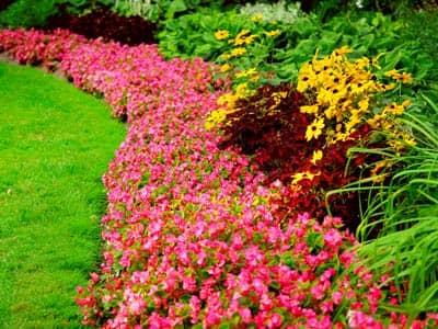 7 Steps to Growing a Garden of Prayer Design Your Garden Beliefnet