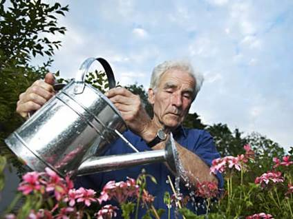 Old man watering the plants