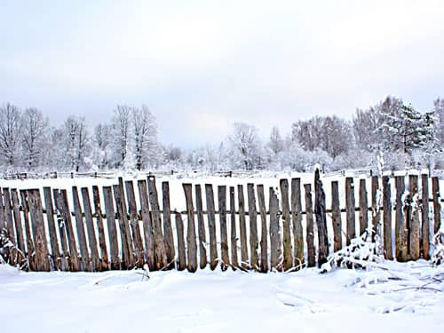 Boundary fence in the snow