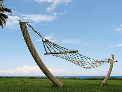 Comfortable hammock in a field