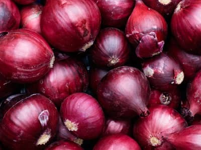 Red Italian onions