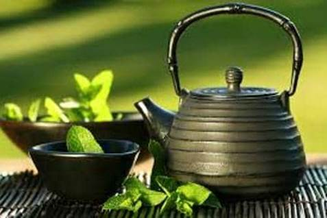 green tea cover photo