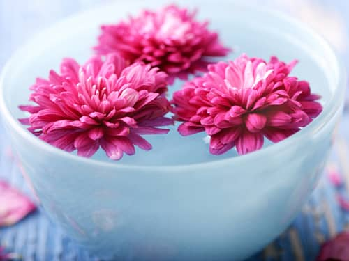 Peaceful bowl of flowers