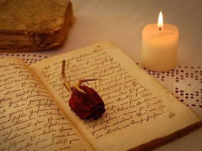 Pressed rose in antique book