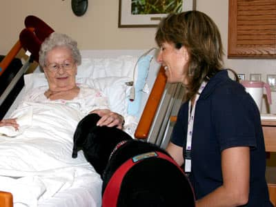 Old woman petting dog with nurse