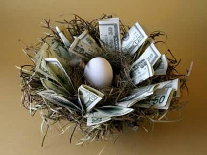 Nest egg. Money in a nest surrounding an egg