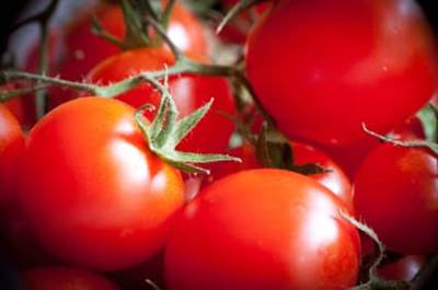 Five foods to protect you against sunburn by cindy l tjol l sun safety tips l powerful foods - Foods protect skin sunburn ...