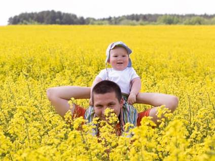 Father and baby wading through a field of yellow flowers