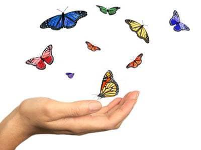Releasing butterflies