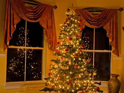 Christmas tree in a living room