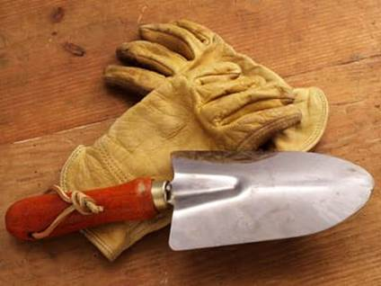Gardening gloves and trowel