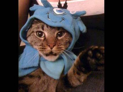 Halloween Cat Costume monster kitty