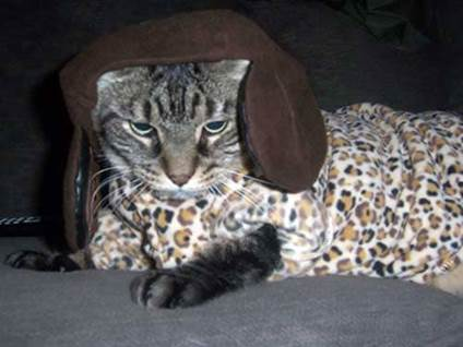 Halloween Cat Costume leopard kitty