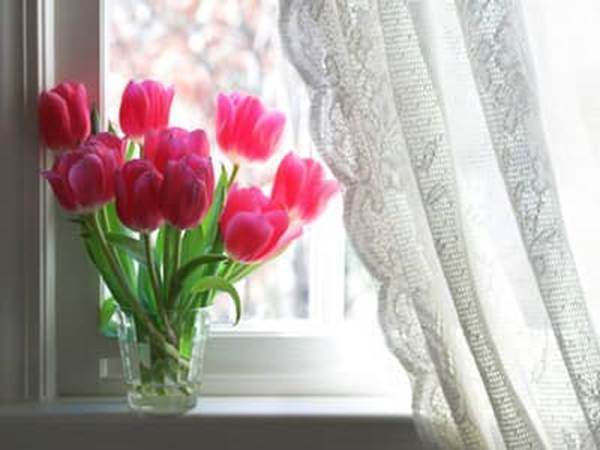 Pink tulips in a vase on a windowsill