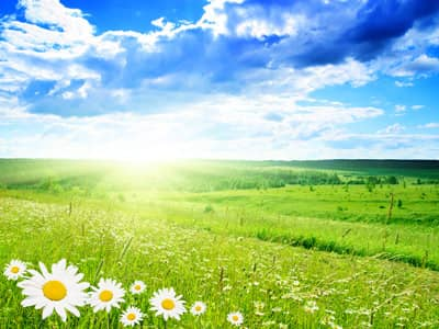 Quotes on Nature, Peacefulness, Stillness, Happy, Wellness ...