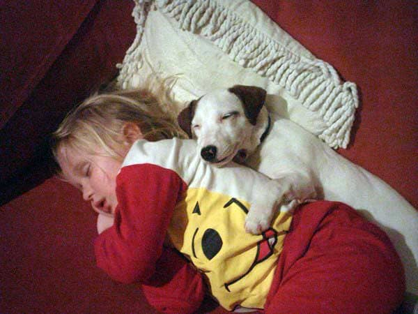 Cute little blonde girl sleeping with dog