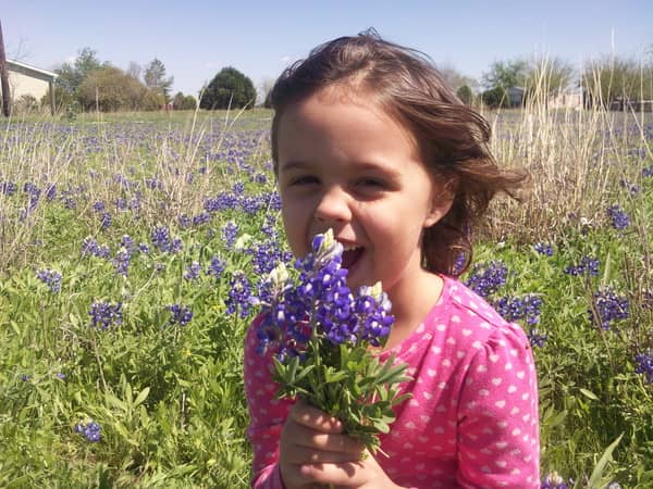 Cute little girl with brown hair in a flower field