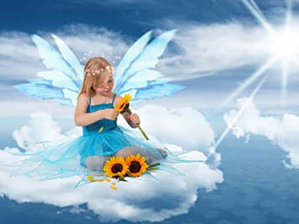 Sunflower sky fairy