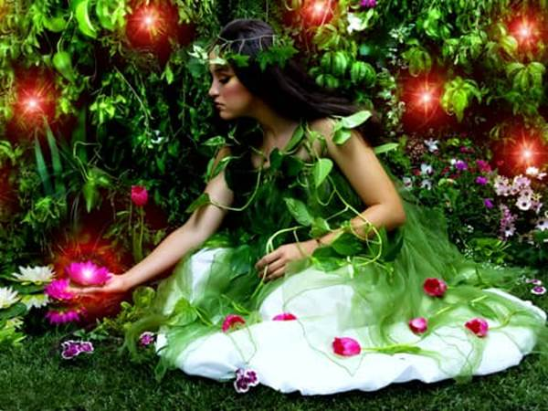 Garden flower fairy