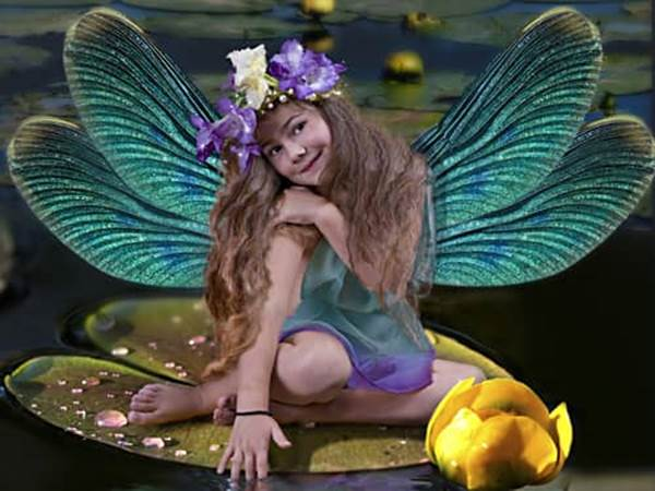 Dragonfly wings girl fairy