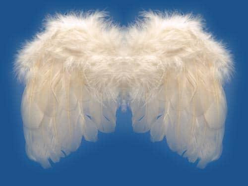 Angels-Angel Wings