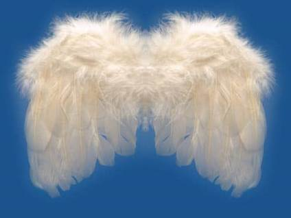 Angels-Angel Wings