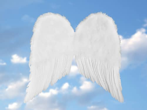 White angel wings blue sky